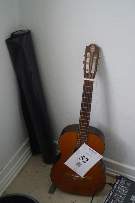 Akustisk guitar.